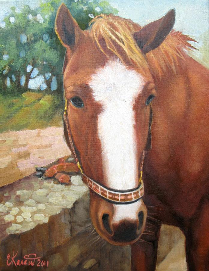 Портрет лошади на заказ с фотографии. Нормандия. 2011г.