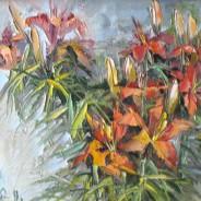Лилии с дачи